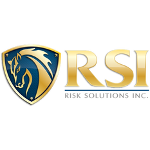 Risk Solutions Inc